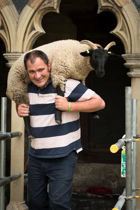 Carrying a sheep!